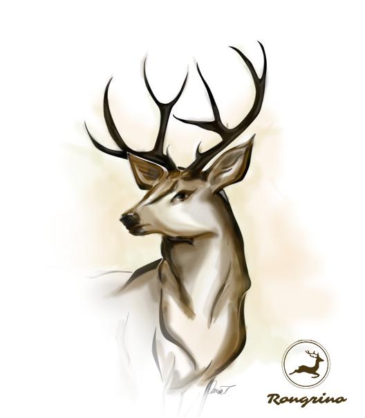 Palchi e trofei le corna di cervo simbolo di potenza for Corna cervo